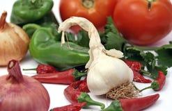 Organisch knoflook met veggies Royalty-vrije Stock Foto's