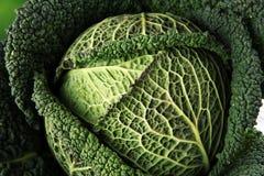 Organisch koolhoofd Anti-oxyderend uitgebalanceerd dieet die met savo eten stock fotografie