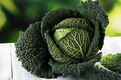 Organisch koolhoofd Anti-oxyderend uitgebalanceerd dieet die met savo eten royalty-vrije stock fotografie