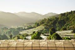 Organisch Landbouwbedrijf op de berg Royalty-vrije Stock Fotografie