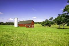 Organisch landbouwbedrijf op de heuvel stock foto's