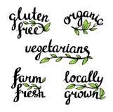 Organisch natuurvoeding, veganist en vegetariërsmenu stock illustratie