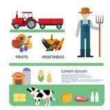 Organisch Schoon het Malplaatjeontwerp van de Voedsel Goed Gezondheid royalty-vrije illustratie