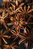 Organisch trocknen Sie Stern des Anises Lizenzfreies Stockbild