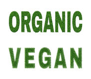 Organisch veganistontwerp Stock Fotografie
