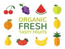 Organisch vers smakelijk vruchten concept Reeks vlakke vruchten Veganistmenu Gezond voedselontwerp Vector illustratie Stock Fotografie