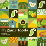Organisch voedsel Stock Foto's