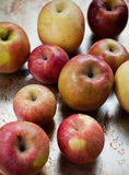 Organische Äpfel Lizenzfreie Stockfotos