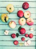 Organische Äpfel auf Schiefer Frische rote gelbe und grüne Äpfel mit Stockfotos