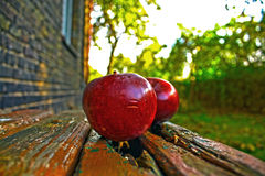 Organische Äpfel im Rahmen Stockbild