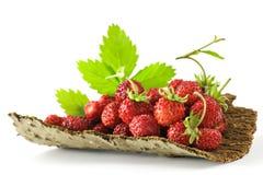 Organische Aardbeien stock afbeelding