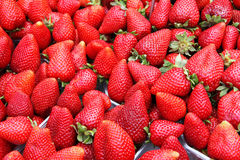 Organische aardbeien in een stapel Stock Afbeeldingen