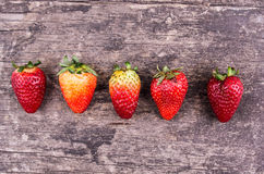 Organische aardbeien op hout Stock Fotografie