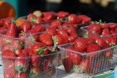 Organische aardbeien op markt stock foto's