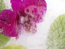 Organische Abstraktion mit Blume und Wasser Stockfotos