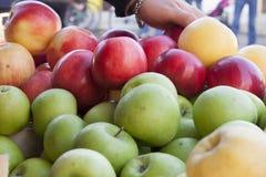 Organische angebaute Äpfel stockfotografie