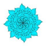 Organische Anlage der blauen rosafarbenen Blumenvektor-Ikone Hand gezeichnetes Heiratsplakat oder Postkarte Blumeninspirationsgra vektor abbildung