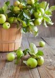 Organische Appelen met bladeren in de Mand. Stock Afbeeldingen