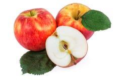 Organische appelen met bladeren op witte achtergrond Royalty-vrije Stock Fotografie