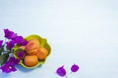 Organische Aprikosen in einer grünen Schüssel Lizenzfreie Stockbilder