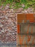 Organische Architektur Stockbild