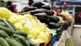 Organische Aubergine en Peper stock videobeelden