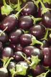 Organische Auberginen auf Verkauf am Markt Lizenzfreies Stockfoto