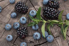 Organische Beeren des Sommers Gesunde Nahrung Gemischte frische Beeren Brombeere, Blaubeere und tadellose Blätter Stockfotos
