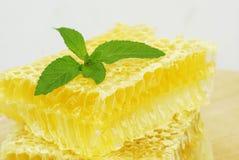 Organische Bienenwaben Lizenzfreie Stockbilder