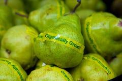 Organische Birnen Lizenzfreie Stockfotos