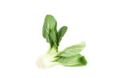 Organische bok choy op witte achtergrond Stock Foto