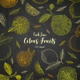 Organische citrusvruchtenbanners De uitstekende stijl van de gravureschets Het grote gezonde malplaatje van het voedselontwerp me royalty-vrije illustratie