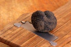 organische de zomertruffel en een truffelsnijmachine stock fotografie