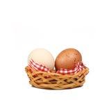 Organische Eier Lizenzfreies Stockfoto
