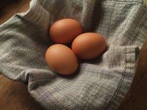 Organische Eieren Royalty-vrije Stock Afbeelding