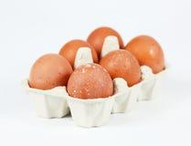 Organische eieren royalty-vrije stock fotografie