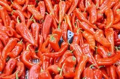 Organische en gezonde Beelden van capiapeper Stock Foto's