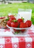 Organische Erdbeeren Stockfotografie