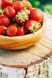 Organische Erdbeernahaufnahme Reife Erdbeere herein Stockfoto