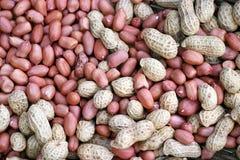 Organische Erdnüsse Lizenzfreie Stockfotos