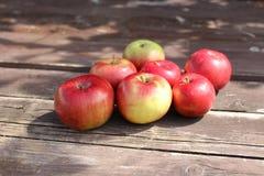 Organische frische Äpfel auf hölzernem Hintergrund im Sommerlandwirtschafts-Konzeptthema mit frischen Äpfeln in der Natur Lizenzfreie Stockbilder