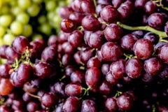 organische frische purpurrote Trauben stockfotos