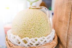 Organische Frucht frischer grüner Kantalupe Melone der Nahaufnahme Lizenzfreies Stockbild