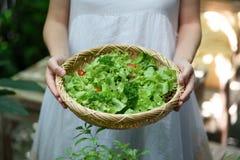Organische fruitsalade stock foto
