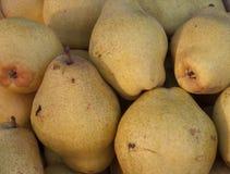 Organische gekweekte peren stock foto