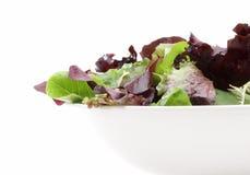 Organische gemengde salade Royalty-vrije Stock Foto's