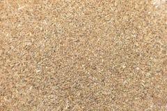 Organische getrocknete Nahaufnahmehintergrundbeschaffenheit der Koriandersamen (Coriandrum Sativum) lizenzfreie stockbilder