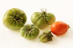 Organische, grüne und rote Tomate auf weißem Hintergrund Stockfoto
