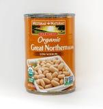 Organische große Nordbohnen Stockfoto
