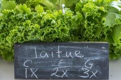 Organische Groene Sla voor Verkoop bij de Lokale Markt van Familielandbouwers, M Stock Foto